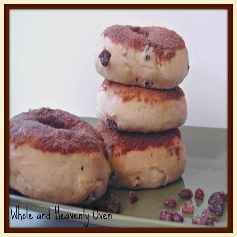Cinnamon-Dipped Raisin Doughnuts No15