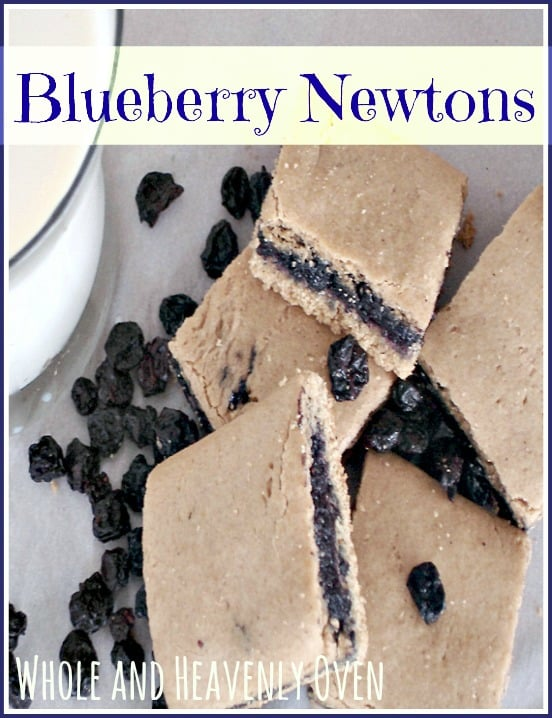 Blueberry Newtons