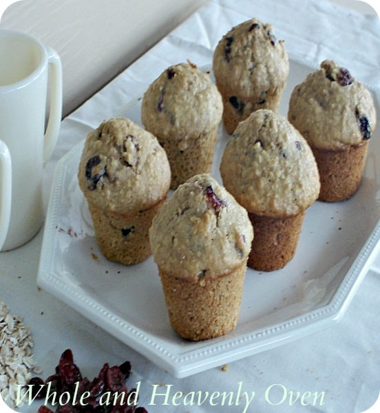 Cranberry Oat Muffins5