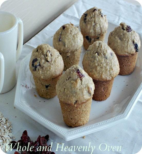Cranberry Oat Muffins5