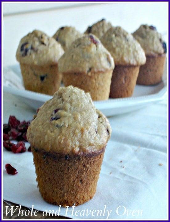 Cranberry Oat Muffins