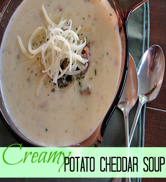Creamy Potato Cheddar Soup