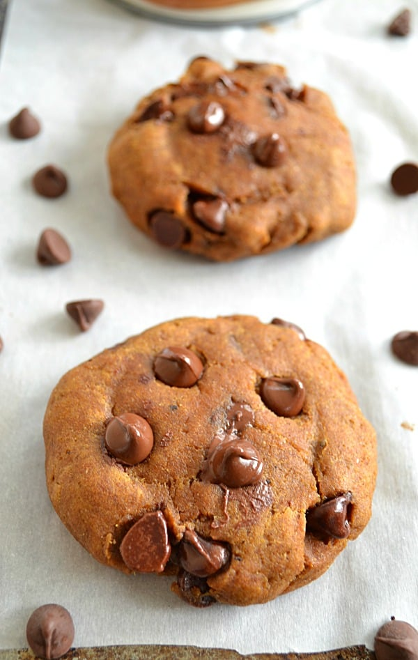 Pumpkin Chocolate Chip Cookies | wholeandheavenlyoven.com