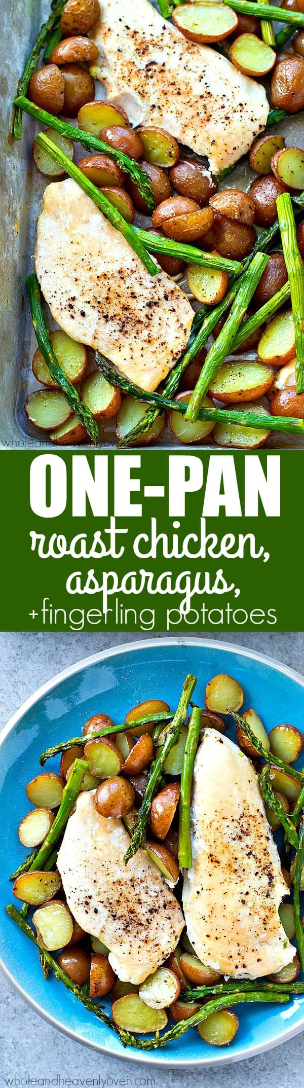An entire spring dinner made in one pan! Juicy roasted chicken, tender asparagus, and lots of roasty fingerling potatoes for one winner of a dinner.