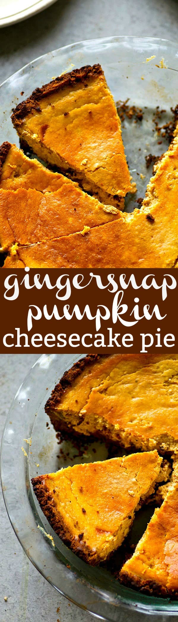 Sweet 'n' spicy gingersnap cookies make an insanely good crust for this seasonal twist on pumpkin cheesecake pie! It's rich, silky, and you'll definitely want it on your Thanksgiving pie table!