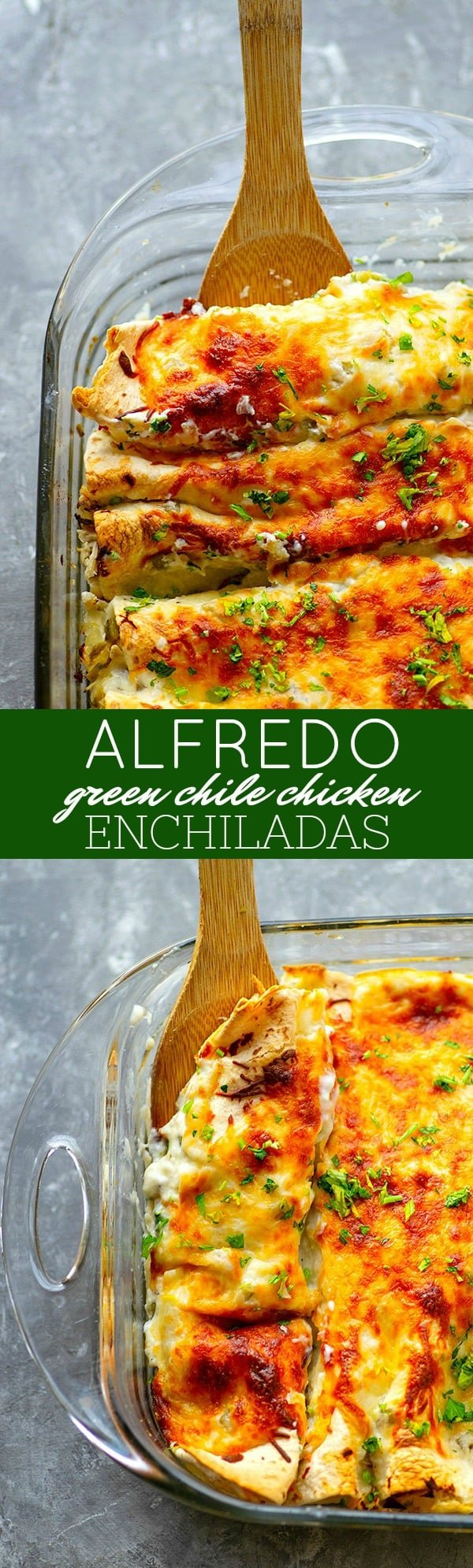 Alfredo Green Chile Chicken Enchiladas - Spicy green chile pulled chicken and a creamy white alfredo sauce are a DREAMY combo in these cozy, cheesy green chile chicken enchiladas! Use leftover chicken for MAXIMUM ease.