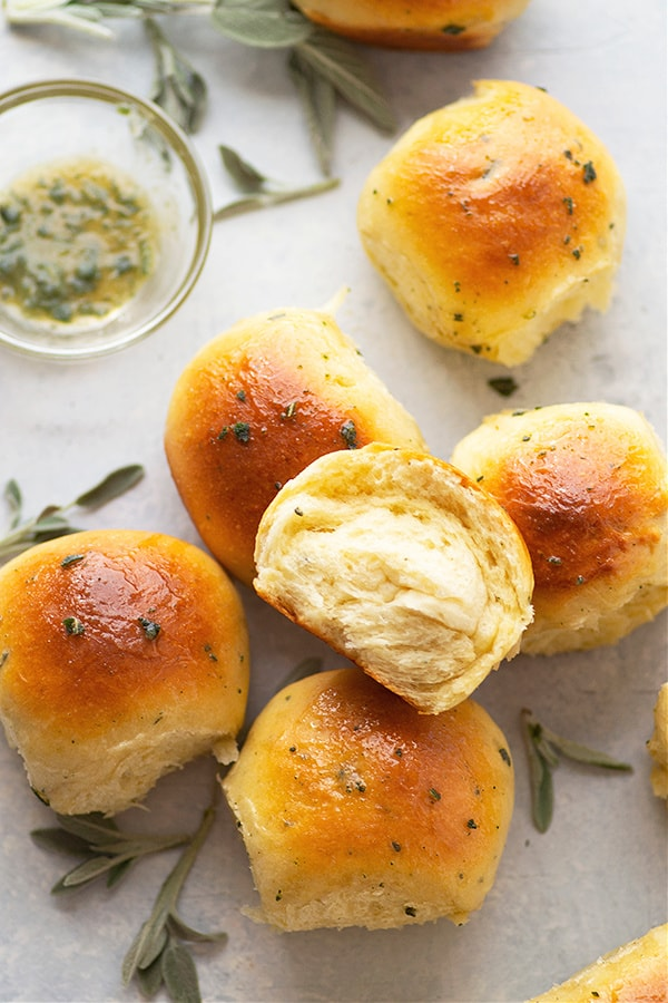 These classic Japanese milk bread rolls are perfectly rich and fluffy inside and brushed in an incredible honey sage butter. - recipe includes overnight and freezing options!